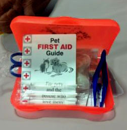 Beg 'n Bark First Aid Kit